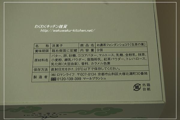 greentea-chococake4