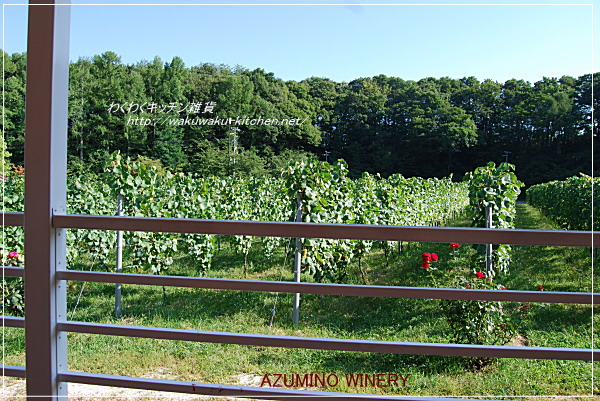 azumino-winery-18