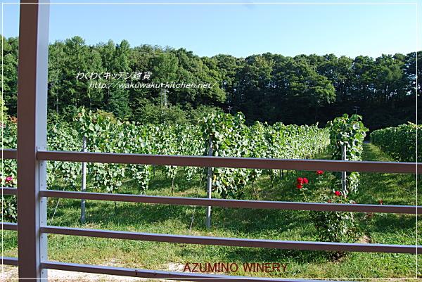 azumino-winery-18