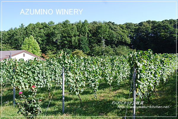 azumino-winery-2