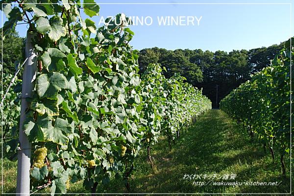 azumino-winery-3