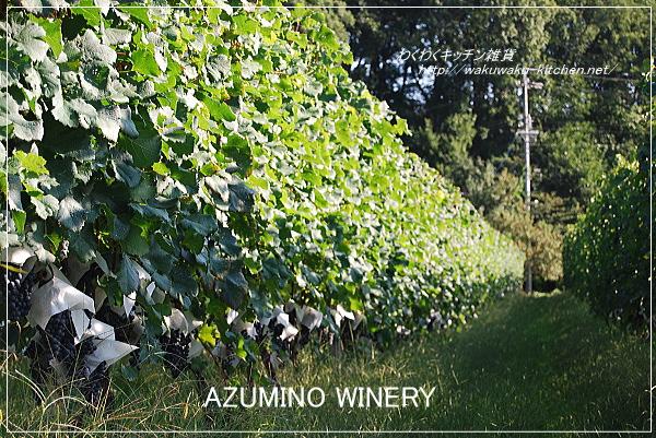 azumino-winery-4