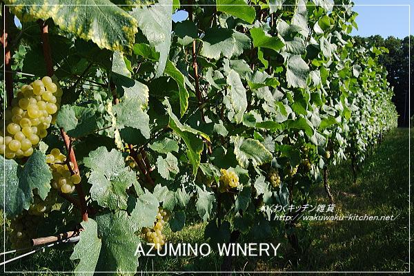 azumino-winery-7