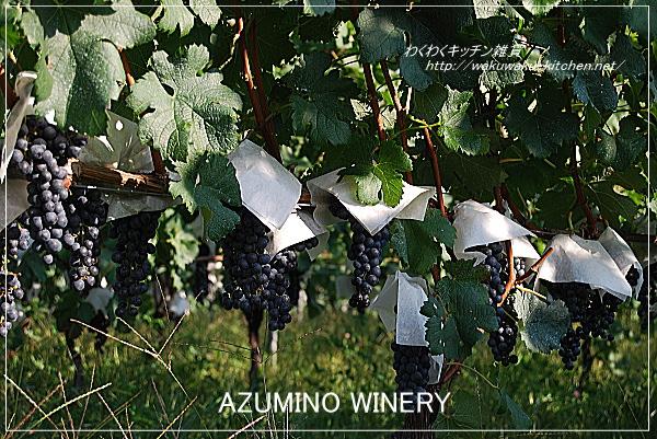 azumino-winery-8