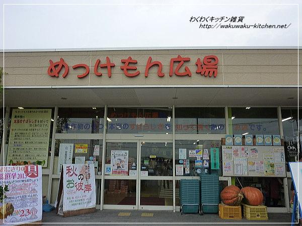 mekkemonhiroba-2