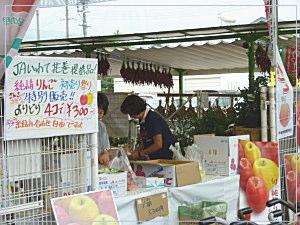 mekkemonhiroba-8jpg
