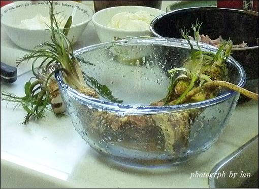 horseradish-5